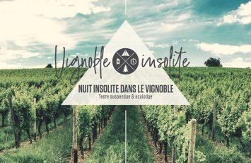 vignoble-insolite-vallet-44