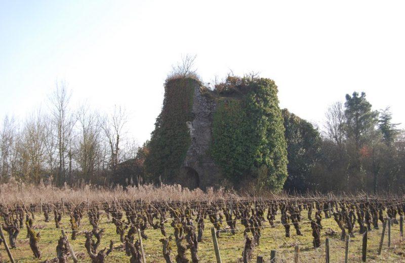four-a-chaux-le-montru-patrimoine-culturel-levignobledenantes- la-chapelle-heulin-44 (1)