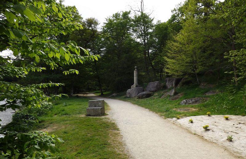 garenne-lemot-avril–levignobledenantes2017–9-