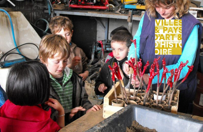 juniors metiers savoir faires atelier la vie d un cep