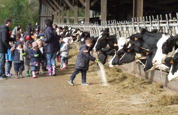 juniors metiers savoir faires beurre a la ferme