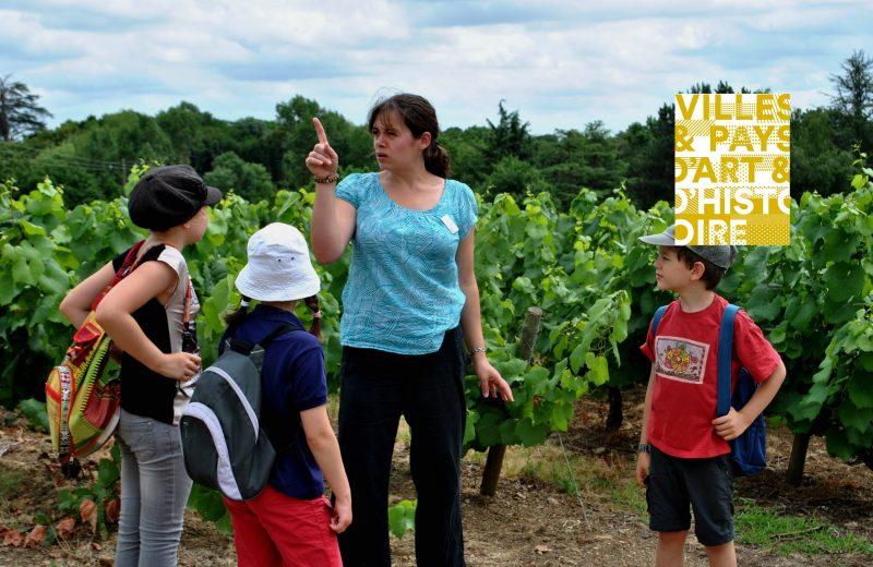 juniors paysages et developpement durable les vignes