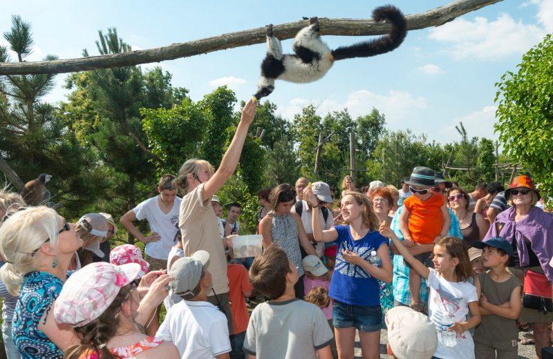 juniors paysages et developpement durable zoo de la boissiere du dore