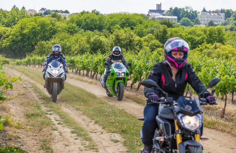 motos-vignes-route-vins-osezmauges-anjou-©D.Drouet-_Z6A3978