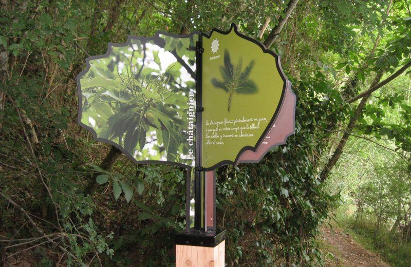 murmures-rochers-arbres-palabres-levignobledenantes-tourisme (8)