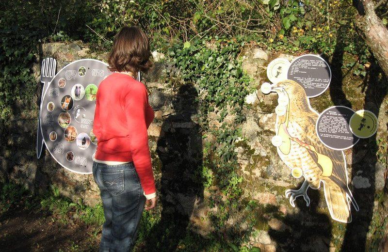 murmures-rochers-piste-empreintes-levignobledenantes-tourisme (16)