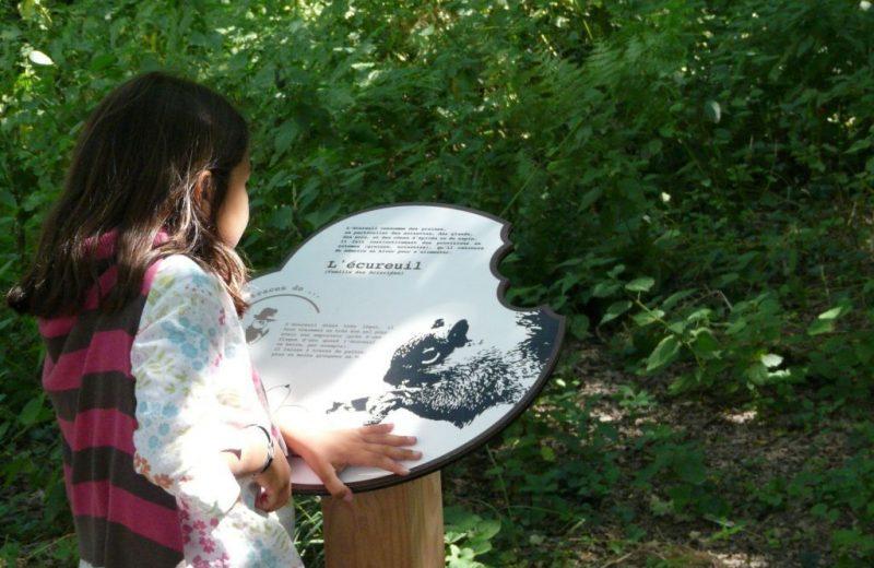 murmures-rochers-piste-empreintes-levignobledenantes-tourisme (9)