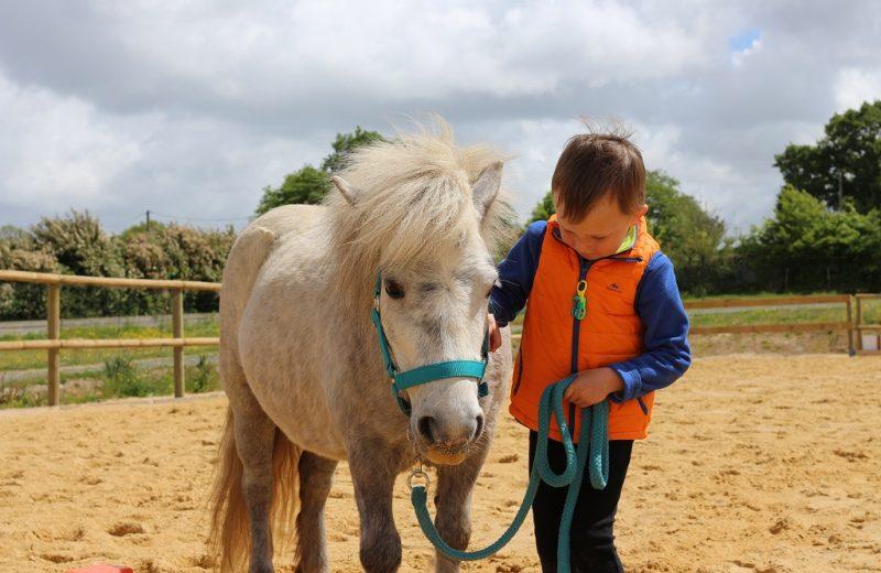poney-stage-vignes-en-selle-sevremoine-saint-crespin-sur-moine-cholet-na