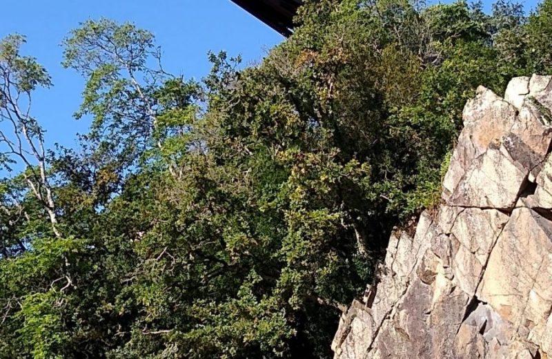 porte-vue-pont-caffino-chateauthebaud-44-levignobledenantes