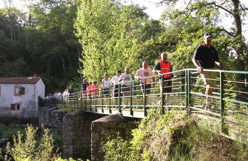 reuzard-vallee-maine-aigrefeuille-sur-maine-44- (2)