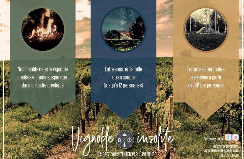 vignoble-insolite-2-vallet-44-levignobledenantes
