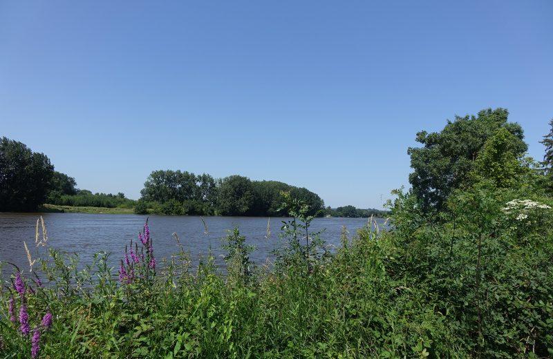 visite Loire facon ludique 2021 le vignoble de nantes tourisme