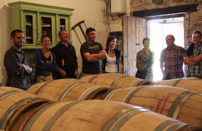 viticulteur-forgesu-mouzillon-44-DEG (8)